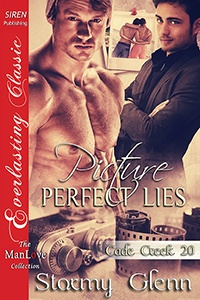Picture-Perfect Lies (MM)