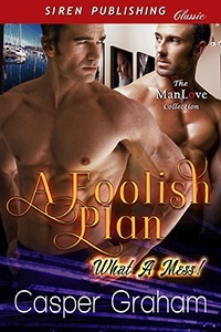 A Foolish Plan (MM)
