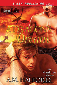 A Dragon's Dream (MM)