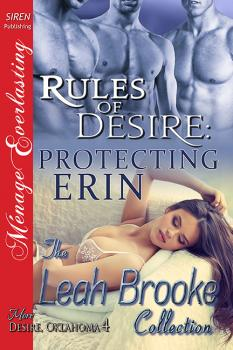 Rules of Desire: Protecting Erin (MFMM)