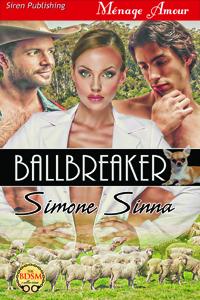 Ballbreaker (MFM)